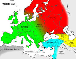 map of europe western eurasia for 7000 bc showing four main genetic groupings