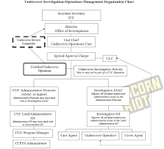 Ice Organizational Chart Icebreaker Pt 5 Confidential Homeland Security Undercover
