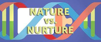 gender differencesthe nature versus nurture debate and   seventh grade nature vs nurture debate the falcons flyer intelligence and essay 192 nature and nurture