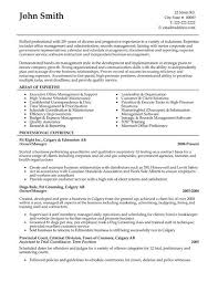 Executive Resume Summary Statement Wallpapers 43 Recommendations