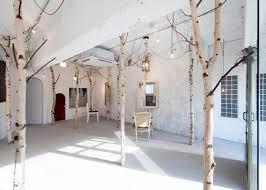 An indoor forest. Image via Gardenista. Birch TreesBirch ...