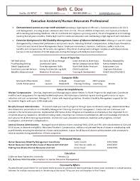 Chief Hr Officer Sample Resume Resume Hr Sample Resume 20