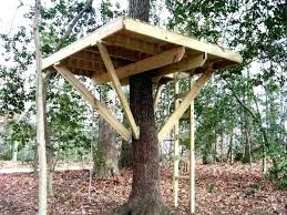 kids tree house. Kids Wooden Tree House Kits Building Kit Cool Designs Wood For S Home Decor