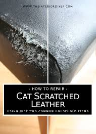 how to repair cat scratched leather using just two household items