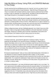help me essays argumentative essay college paper  where to essays online essay writing help from com