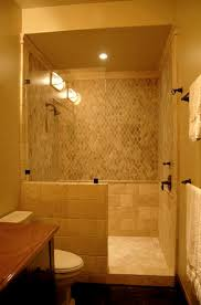 Captivating Doorless Shower Designs For Small Bathrooms 98 In Home  Decoration Ideas with Doorless Shower Designs For Small Bathrooms