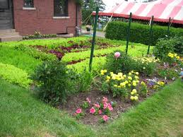 Kitchen Garden Program Master Gardener Program