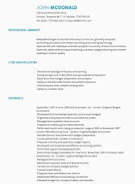 Examples Of Cv
