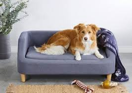 aldi s famous pet sofa beds will be
