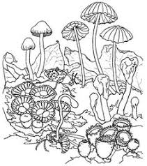Small Picture Trippy Coloring Pages Trippy Mushrooms Coloring Pages Pictures