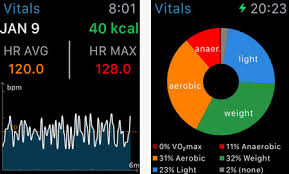 Spinning Heart Rate Chart 6 Apple Watch Apps For Heart Rate Zones