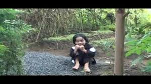 Image result for dì ghẻ con chồng