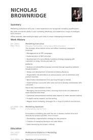 Marketing Executive Resume Samples - Visualcv Resume Samples Database