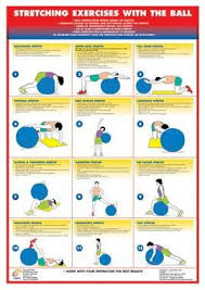 Swiss Exercise Ball Stretching Chart Stretch