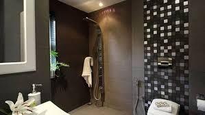 10 beautiful walk in shower design ideas s interioridea net