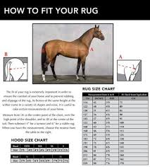 Sizing Guide Horsefit