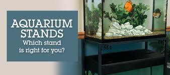 furniture aquarium. Selecting Aquarium Stands \u0026 Canopies Furniture I
