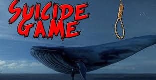 """Képtalálat a következőre: """"kék bálna"""""""