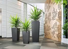 office pot plants. Modern-indoor-pots-and-planters. Planter. Unique Designs. Office Plants Pot E