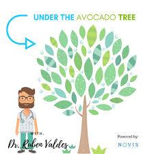 Under The Avocado Tree