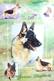 7 5 german shepherd dog gift present wrap ebay collectibles