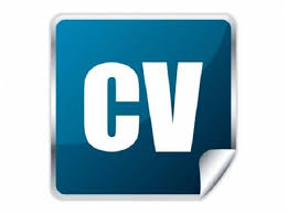 Cv Writing Services Free Cv Writing Service Full Time Professional Cv Writer 600 Great