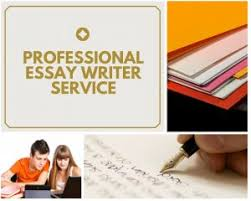 professional essay writer service essaywritingacer