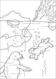 Small Picture 3845 best colouring pages images on Pinterest Colouring pages