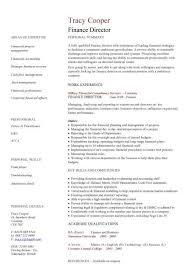 resume template finance financial cv template business administration cv  templates