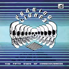 Peaking Lights Beautiful Son The Fifth State Of Consciousness Double Album Peaking Lights