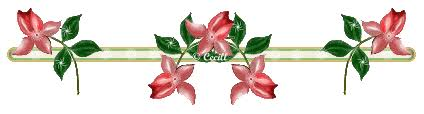 Resultado de imagen de separadores florales