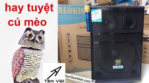 Loa Kéo 4 triệu 880k Alokio R95 I 4 tấc 1 trung I HAY BÁ CHÁY [Tâm Việt] -  YouTube