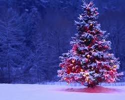 christmas tree backgrounds for desktop. Brilliant Desktop And Christmas Tree Backgrounds For Desktop H