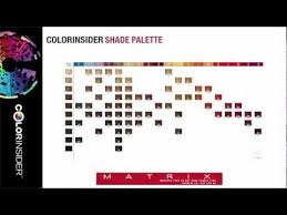 Matrix Color Chart Online Colorinsider Online Education The Colorinsider Shade