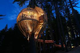Home  Tree House Designs Amazing Tree Houses For Sale Treehouse Coolest Tree Houses