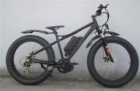 Pas System Bafang Mid Crank Motor Electric Bike Buy Mid Crank