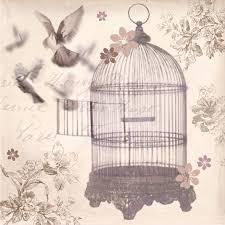 49+] Bird Cage Wallpaper on WallpaperSafari