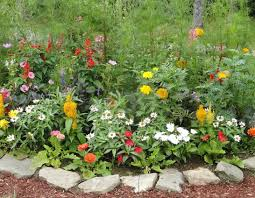 Decorative Stones For Flower Beds Landscape Stone Flower Beds Flowers Ideas