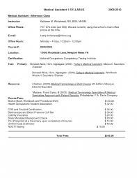 resume format for freshers it engineers persuasive essay examples  resume format for freshers it engineers persuasive essay examples brochure templates google docs medical objective bank job