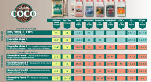 canna feeding schedules the ultimate