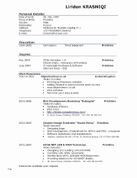 Classic Resume Format Adorable Resume Format Google Docs Classic Free Resume Templates Google Docs