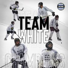 The BEST Summer Hockey League in Chicago for Players ages 17 and ...