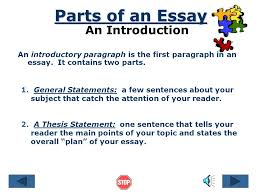 organizing an academic essay references © by ruth luman  introduction what is an essay