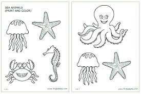 Small Picture Sea Animals Printable Templates Coloring Pages FirstPalettecom