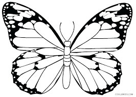 Free Butterfly Coloring Pages For Toddlers Carriembeckerme