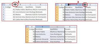 Formato Basico Formato Basico De Un Documento Informatica Basica Cenigraf