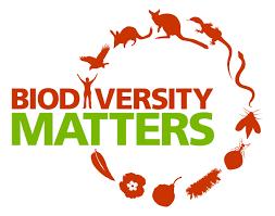 STRAND V: Genetics, Evolution & Biodiversity