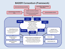 Organizational Chart | Bader Consortium