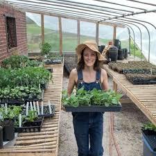 knoxville farm and garden knoxville farm garden craigslist