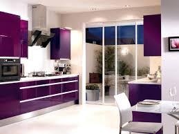 Modern Kitchen Colors Beautiful Purple Kitchen Color Combination